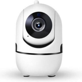 Beveiligingscamera - 1080P HD - Beweeg en geluidsdetectie - Babyfoon - Huisdiercamera - WiFi